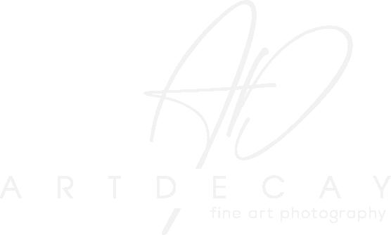 logo artdecay