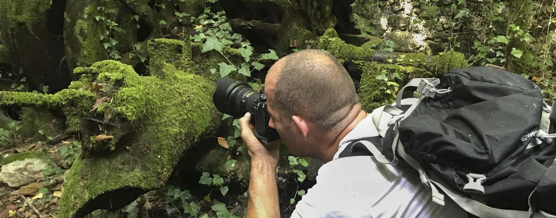photo gear, D800