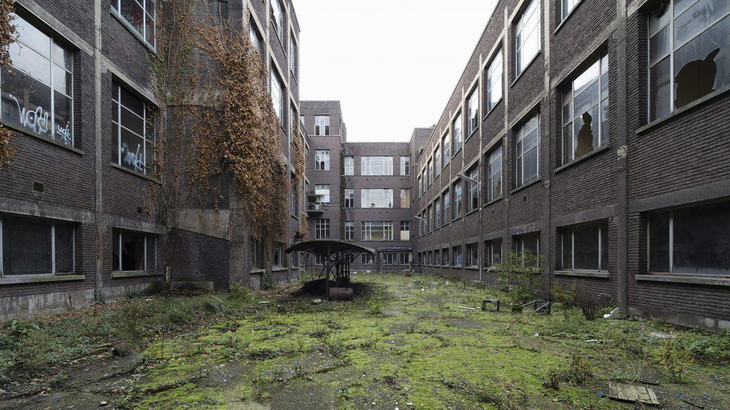 lost schoolyard with green in an abandoned school in Belgium